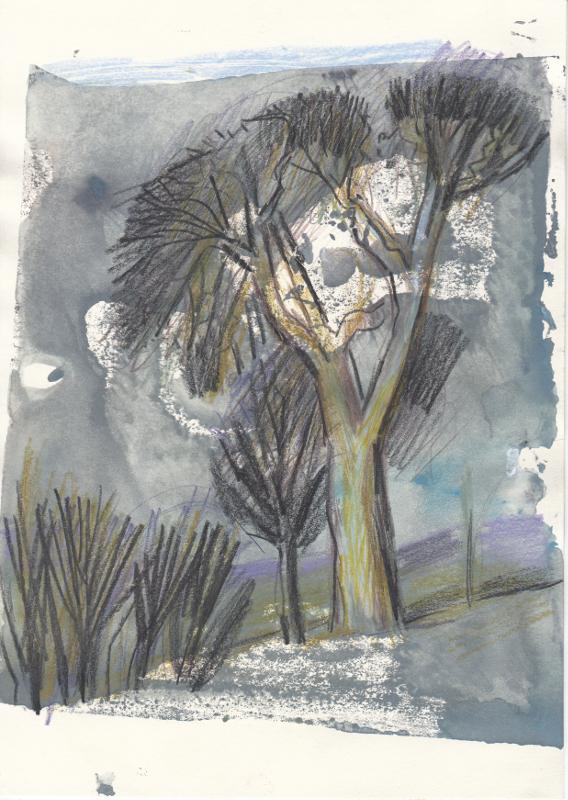 Bäume_grau